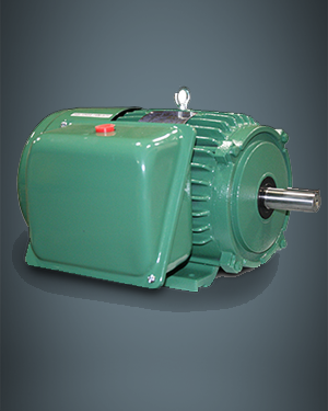 Single Phase TEFC Motors